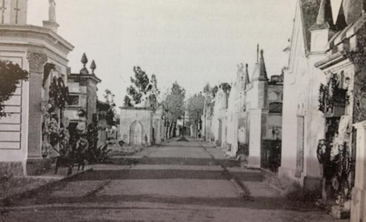 Cementerio Viejo. Calle principal