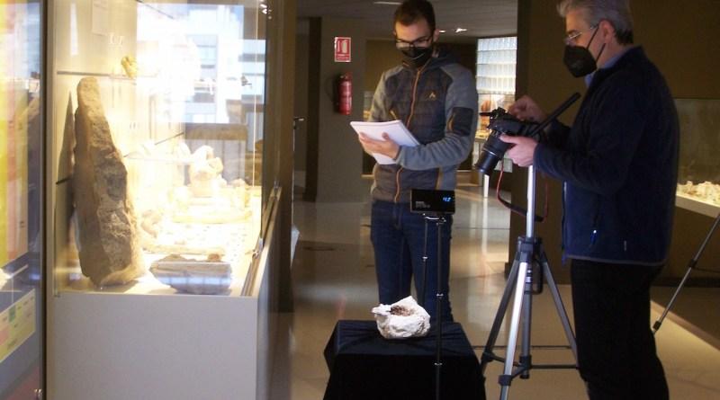 Investigadores de un proyecto sobre la flora de hace 66 millones de años visitan el MUPE