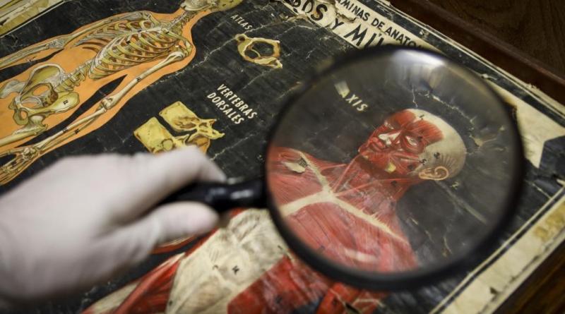 El Crowdfunding llega a Pusol: busca colaboración para restaurar colecciones
