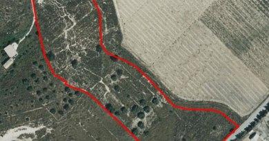 Ortofoto con la parcela afectada por el proyecto en rojo (M.A. Pavón)