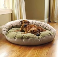 Different Types Of Dog Beds For Large Dogs That Offer Cozy ...