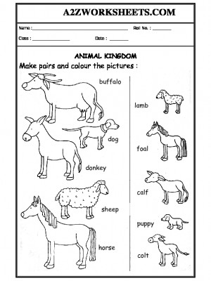 A2Zworksheets: Worksheets of Domestic Animals-Animals