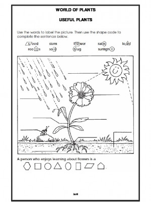 A2Zworksheets: Worksheets of Getting to know Plants-Plants