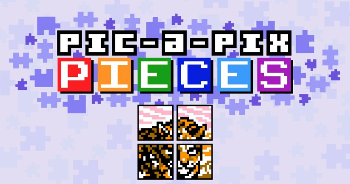 Pic-a-Pix Pieces