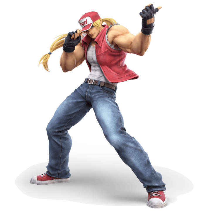 The Legendary Wolf, Terry Bogard from the FATAL FURY series