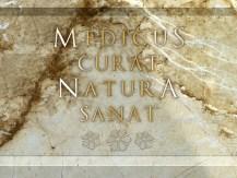 medicus-curat-natura-sanat