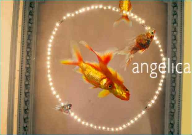 Festival AngelicA 2012