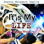 Shatta Wale – It's My Life ft. Sarkodie (Prod. By Shawers)