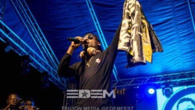 Photo of Edemfest introduced me to the Volta market – TeePhlow