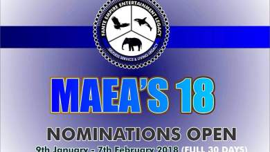 Photo of F.E.E.L 2018 MAEA's FULL CATEGORIES LIST