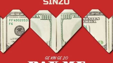 Photo of Dammy Krane – Pay Me My Money (Remix 2.0) Ft. Sinzu