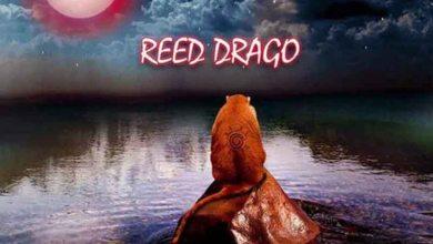 Photo of Reed Drago – Ballin Ft. Medikal & Attitude