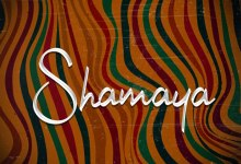 Photo of Idowest – Shamaya Ft Patoranking