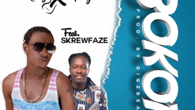 Photo of Roy X Taylor – Bokor Ft SkrewFaze (Prod By GigzBeatz)