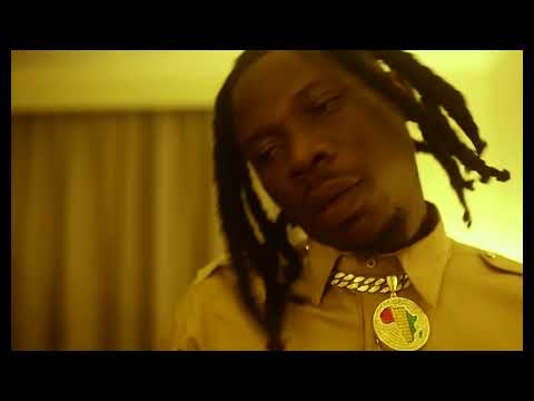 Photo of Official Video: Stonebwoy – Blaze Dem [Freestyle]
