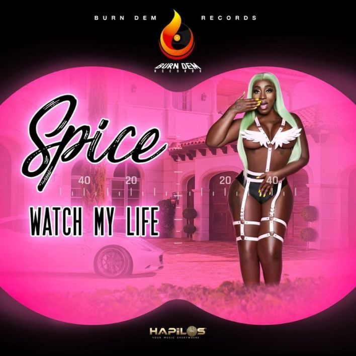 Spice – Watch My Life mp3 download