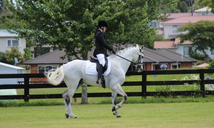 Aachen Dressage Youngstars