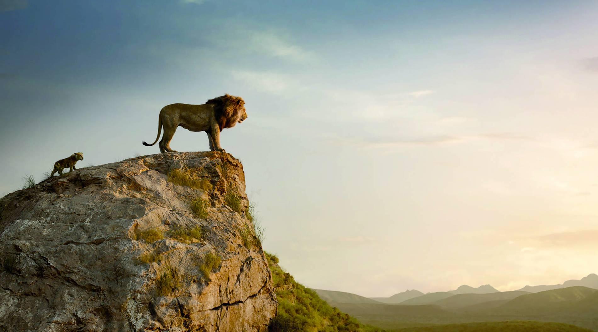 König Der Löwen Malvorlage
