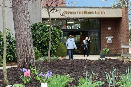 Severna Park Community Library  Anne Arundel County MD