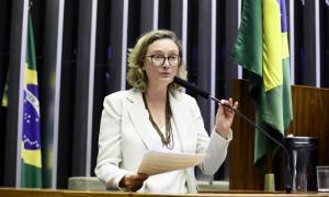 A deputada federal Maria do Rosário: monopólio do humor legítimo. Foto: Luís Macedo/Câmara dos Deputados