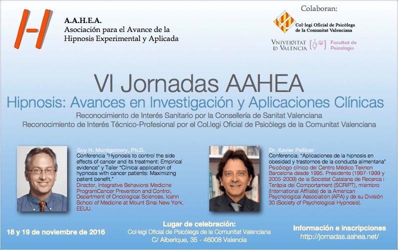 Reconocimientos de las VI Jornadas AAHEA