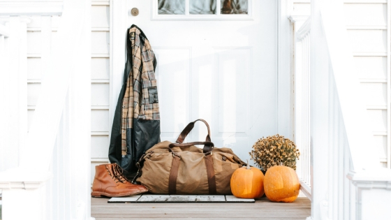 How to avoid pests during the fall and winter