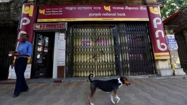 neerav modi gives bribe pnb officers पीएनबी