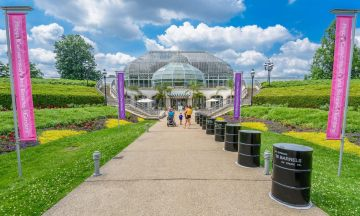 Concept image for the new entrace to the Phipps Conservatory and Botanical Gardens