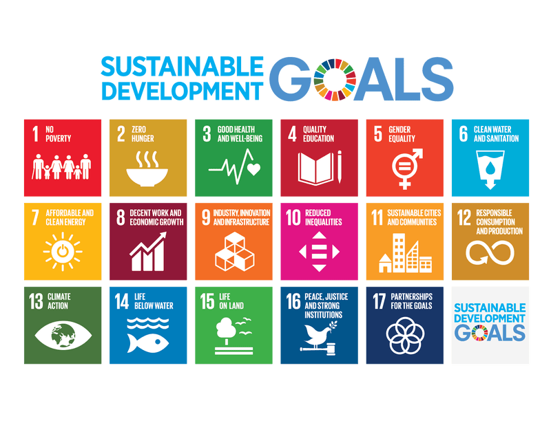 Infographic of the UN Sustainable Development Goals
