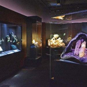 View of a gallery with cases illuminated in dark purplish lighting. Rocks and gems are on display.