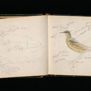 This Rosa Bonheur sketchbook from 1847 is one of 100,000 digitized images and associated metadata the Getty Research Institute has made available via the Digital Public Library of America.