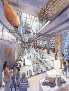 Conceptual drawing of the new Burke Museum.