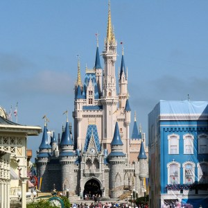 Photo of the castle and other buildings in Disney World.