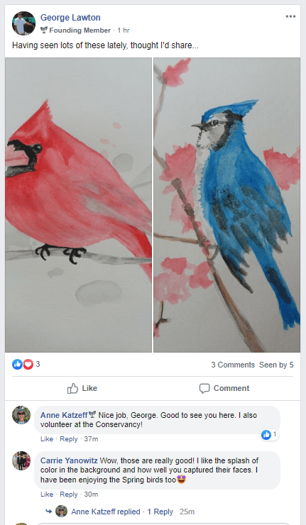 A program participant sharing watercolor illustrations of birds, with the instructor leaving compliments for details of the illustrations.