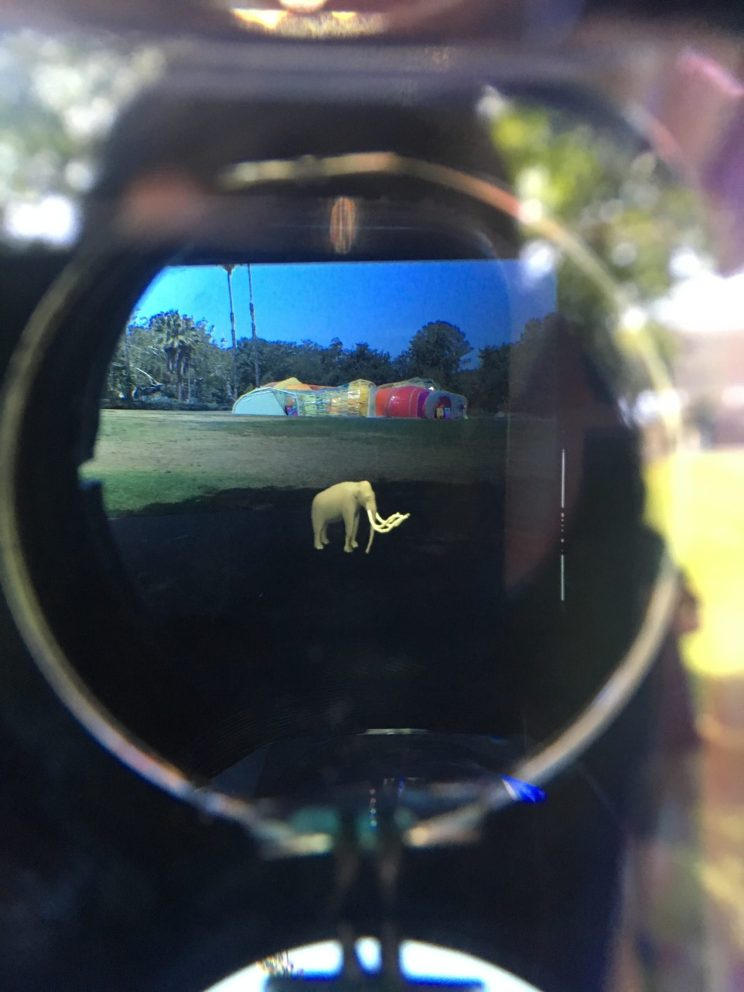 A view through an eye hole at a simulated tusked animal overlaid on the landscape outside