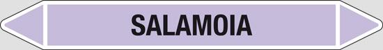 SALAMOIA(alcali o basici)