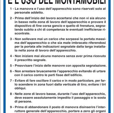 ISTRUZIONI PER LA MANOVRA E L'USO DEL MONTAMOBILI