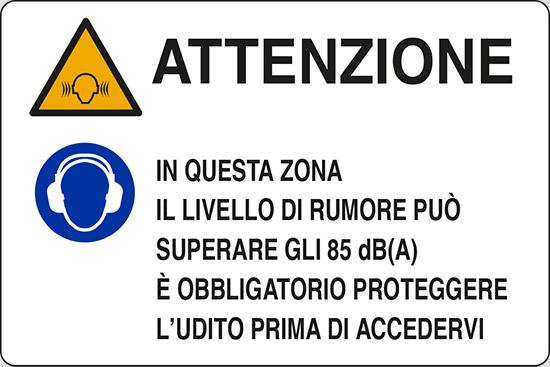ATTENZIONE IN QUESTA ZONA IL LIVELLO DI RUMORE PUÒ SUPERARE GLI 85 dB(A)