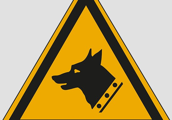 (warning: guard dog)