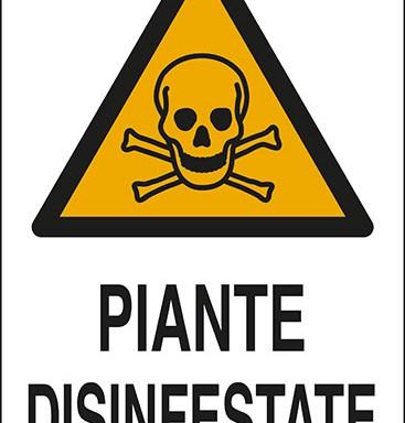 PIANTE DISINFESTATE