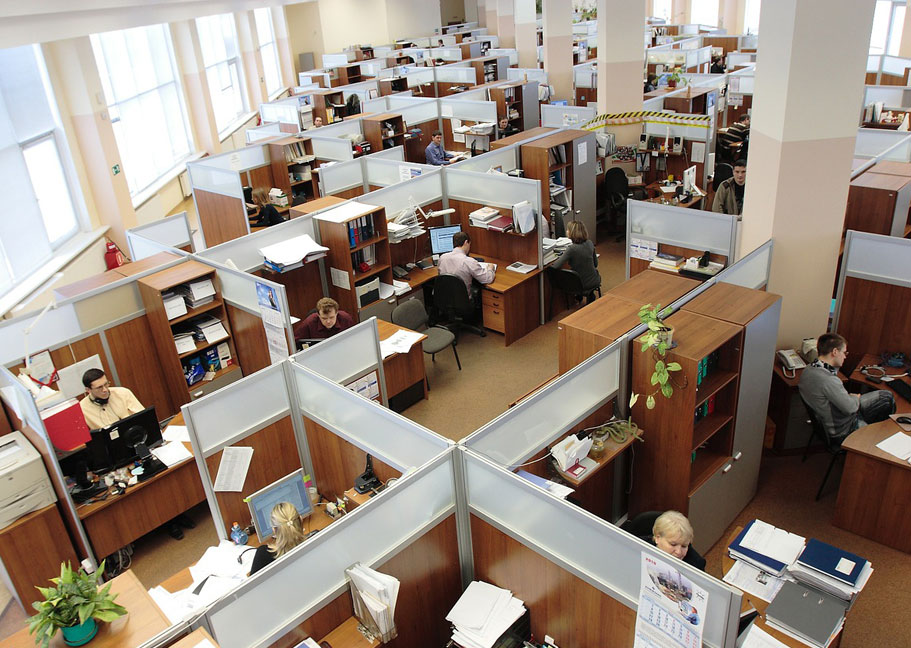 office workers in cubicle