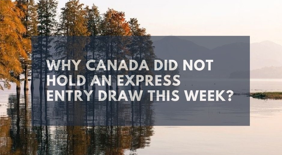 Why Canada Did Not Hold An Express Entry Draw This Week?