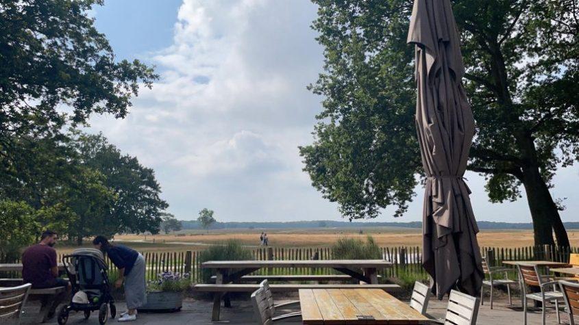 Heidezicht Beemsterkaas zomertour