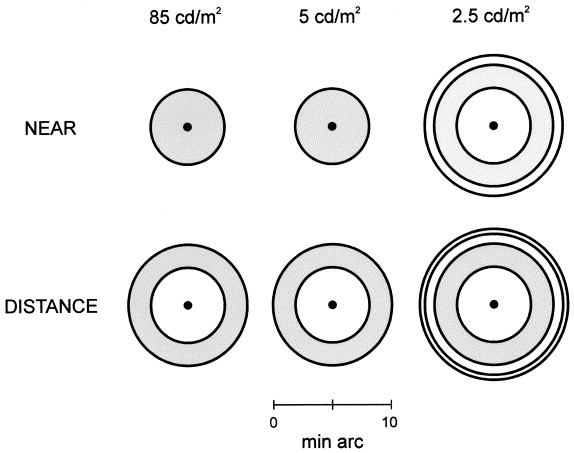 Visual performance with multifocal intraocular lenses