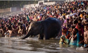 Know about the Sonpur Mela of Bihar,  a vibrant rural carnival like no other