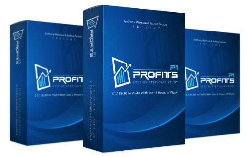 P1 Profits By Joshua Zamora Download