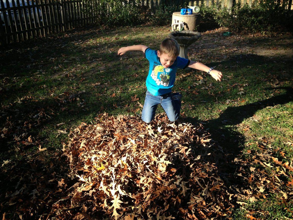 A heart full of leaves - poem - Aaron Blakeley - Gideon in leaves