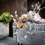 Succulent flowers growing over a planter box