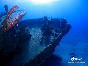 Wreck - Navy Tug - Hull
