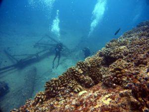 Wreck - Navy Tug - divers - Teresa & Bud